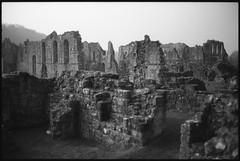 Ruins (fawcetownsley) Tags: blackandwhite bw film diy kodak ruin olympus f2 schwarzweiss zuiko fixer 35mmf2 technicalpan technidol euromaster 18min westoneuromaster