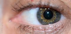 moune (neku.chou) Tags: iris macro nikon vert oeil yeux pupille cils neku bleur d5200 valkaio paupier