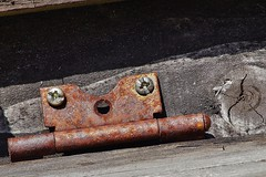 Rusty hinge (dlanor smada) Tags: hinge wood screws rust knots