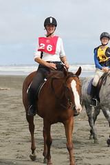 IMG_EOS 7D Mark II201604032005 (David F-I) Tags: horse equestrian horseback horseriding trailriding trailride ctr tehapua watrc wellingtonareatrailridingclub competitivetrailriding sporthorse equestriansport competitivetrailride april2016 tehapua2016 tehapuaapril2016 watrctehapuaapril2016