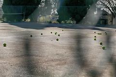 tennis court (annapolis_rose) Tags: vancouver tenniscourt wirefence tennisballs pandorapark