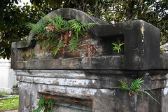 New Orleans - Take Over (Drriss & Marrionn) Tags: usa cemetery grave graveyard concrete outdoor neworleans headstone tomb graves funeral mausoleum granite sarcophagus burial marble tombs lafayettecemetery deceased gravefield vaults crypts neworleansla