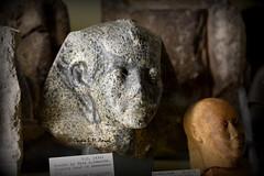Statue from Ancient Egypt (Assyria, Babylon, Akkad, Sumer...) Tags: archaeology sphinx museum ancient pyramid memphis egypt cairo egyptian luxor giza pharoah valleyofthekings thebes petrie hawara ptolemaic fayum newkingdom amarna badari intermediateperiod
