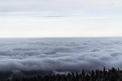 Coastline (new_berlin) Tags: clouds view wolken windy summit brocken aussicht berdenwolken gipfel overtheclouds