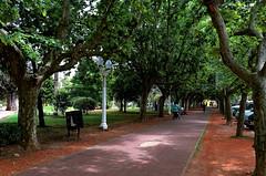 En la plaza Colon. (jagar41_ Juan Antonio) Tags: plaza argentina buenosaires nikon miciudad plazacoln provinciadebuenosaires lujn miargentina d5100 nikond5100