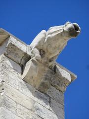20150405 Vaucluse Avignon - Gargouilles (4) (anhndee) Tags: france church frankreich paca gargoyle avignon glise eglise gargouille vaucluse gargouilles provencealpescotedazur