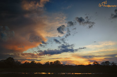 Sunset Reflected (Gavmonster) Tags: blue trees sunset sky orange storm reflection water weather silhouette clouds landscape nikon wideangle land kneppcastle stormchasing stormchaser 1024mm d7000 nikond7000 gswphotography