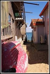 Village ostricole de l'Herbe (Les photos de LN) Tags: sable ruelle bateau plage cabane bassindarcachon pcheurs lherbe aquitaine impasse