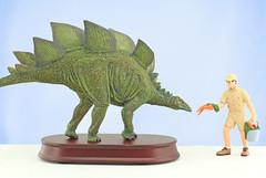 Feeding a Dinosaur (RobinGoodfellow_(m)) Tags: desktop favorite model 135 stegosaurus
