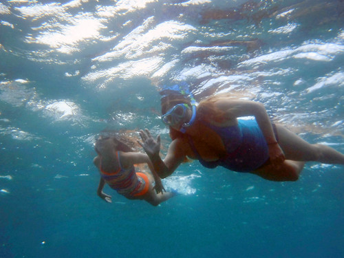Sharks Cove 2015 24