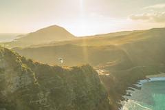 Andrew_Zoechbauer_FirstFlightMPUNewYear_DSC08953-Edit (azoech) Tags: hawaii paragliding makapuu