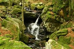 cascade de rummel (varrinphotographie) Tags: eau promenade paysage cascade source marche franchecomt ruisseau environement scheresse