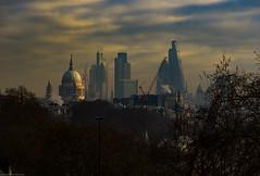 London Skyline (khandozhkoa) Tags: city uk travel winter london architecture landscape nikon europe cityscape d750 nikkor officialnikkor landscapesdreams nikonfx 24120f4g