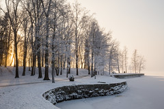 IMG_6444 (Juha Hartikainen) Tags: suomi arboretum fi tampere hatanp pirkanmaa