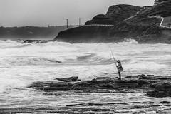 Bigger fish (Allieca Paterson) Tags: ocean sea blackandwhite fish seascape beach monochrome rain newcastle fishing fisherman rocks surf australia newsouthwales newcastlebeach bogeyhole rockfishing kingedwardpark