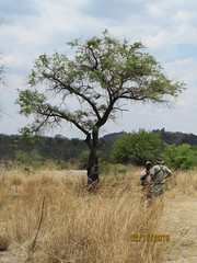 Zimbabwe (217) (Absolute Africa 17/09/2015 Overlanding Tour) Tags: africa2015
