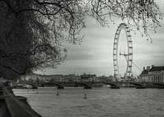 London eye from my of point of wiev (jeanseier) Tags: travel england blackandwhite bw london thames mono britain londoneye nikkor50mmf18 nikkor sortoghvid d7100