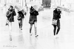 Near the wind (Sbastien Gross) Tags: winter storm paris rain umbrella wind cityhall 2016 project365