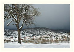 DSCF2989 (Frank Dpunkt) Tags: winter fujifilm murgtal sigma2418 s5pro
