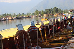 House boats (in cinema, we beleive...) Tags: india house lake boats dal kashmir srinagar jammu newlight chinari mahasarit