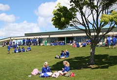 Lunchtime in Spring