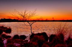 """ Sunset Gildehauservenn "" (Kalbonsai) Tags: trees sunset color water beautiful clouds germany landscape zonsondergang nikon darkness 1855mm waterscape gildehauservenn d5100 naturphotography"