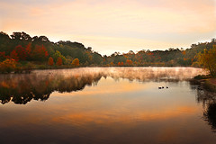 Life in early Autumn (On Explore 2/19/2016) (die Augen) Tags: autumn sky orange lake fall fog clouds canon wow ducks foliage sl1