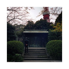 (roberto_saba) Tags: 120 6x6 japan zeiss mediumformat tokyo kodak 400 tokyotower flektogon kiev portra kiev88cm carlzeissjena