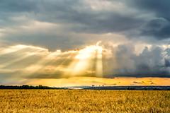 Blessed (MSPhotography-Art) Tags: sunset summer storm nature clouds germany landscape deutschland golden sonnenuntergang outdoor sommer natur wolken thunderstorm landschaft gewitter severeweather sturm badenwrttemberg schwbischealb unwetter swabianalb strumfront