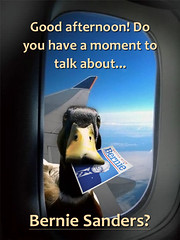 Ducks For Bernie! (martin_emes) Tags: america poster democracy election funny president presidential meme revolution bernie vote campaign primary democratic sanders 2016 bernie2016