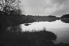 DaE007 (David Swift Photography Thanks for 14 million view) Tags: film water forest 35mm landscape newjersey lakes ilfordxp2 southjersey leicaminilux davidswiftphotography