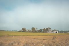 Algún lugar (ruthnellycastaño) Tags: sky house green yellow clouds landscape rice dominicanrepublic dry lonely republicadominicana cotui sanchezramirez