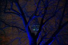 Radio Tower (christophhornung142) Tags: red green rot tower colors yellow night radio licht purple nacht sony illumination gelb fernsehturm blau farbe bume mannheim violett luisenpark langebelichtung strucher winterlichter sonyalpha6000 stimmunglichtknstler