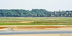 Baie de Somme - Marquenterre 2006  (20) (roland dumont-renard) Tags: mer sable picardie stvalry prssals marquenterre somme baiedesomme ctepicarde
