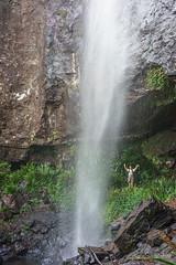 Rainbow Falls (NettyA) Tags: cliff waterfall australia bushwalking qld queensland bushwalk springbrook rainbowfalls goldcoasthinterland 2016 springbrooknationalpark scenicrim seqld warriecircuit bushwalker scbwc sonya7r