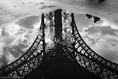 IMG_8834 (SylvainDupuyPhotos) Tags: paris tour reflet pniche toureffeil effeil effeiltower