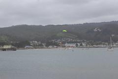 IMG_1995 (armadil) Tags: beach beaches mavericks kitesurfers windsurfers californiabeaches