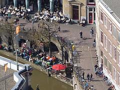 A look down on top of domtower, Utrecht (Alta alatis patent) Tags: spring utrecht top lookdown domtower ontheterrace