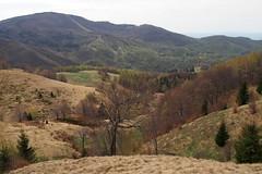távolban a Fekete-hegy / in opposite the Mogosa hill (debreczeniemoke) Tags: landscape spring tavasz tájkép gutin mogosa feketehegy gutinhegység munţiigutâi munţiigutin olympusem5 gutinmountains