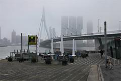 Rotterdam, Erasmusbrug and Wilhelminapier (LichtEinfall) Tags: rotterdam erasmus erasmusbrug nieuwemaas wilhelminapier raperre img3339rdamkopko3