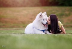 Pure love (PeterPetroff) Tags: dog green girl beauty grass yellow outside model pretty natural outdoor samoyed expression posing calm lovely