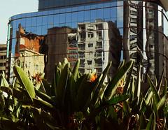 reflect (mirellasapondi) Tags: urban reflects
