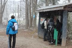 IMG_0414 ( Szczep Wodny Batyk ) Tags: zima wiosna brucetrail snieg wedrowka szczepwodnybaltyk szczepbaltyk silvercreekconservationarea wedrownicy druzyna16ta starsiharcerze