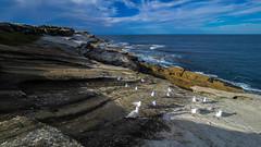 Maroubra beach (Tonitherese) Tags: ocean sydney