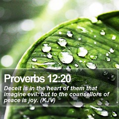 Daily Bible Verse - Proverbs 12:20 (daily-bible-verse) Tags: love prayer jesussaves inspirational scriptures discipleship wordofwisdom