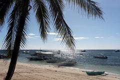 Tropical Beach (Alan1954) Tags: holiday asia philippines bohol panglao 2015