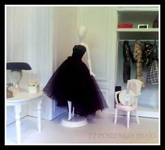 BLACK DRESS (Teporingo Rojo) Tags: doll barbie diorama blackdress mueca vestidonegro
