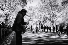 Sax in the Park (8230This&That) Tags: nyc newyorkcity music ny newyork centralpark manhattan streetperformer sax saxophone