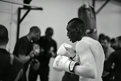 The only (johann walter bantz) Tags: black sport training blackwhite 85mm monochrom boxing 93 boxe pantin boxingclub seinesaintdenis banlieues nikond4s