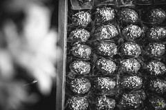 OF-Formatura-Guilherme-90 (Objetivo Fotografia) Tags: family friends party amigos beer guests mom dad sister brother smoke son famlia diverso fotos evento irmo noite formatura cerveja festa msica fumar pai filho decorao homem ceva me comemorao bebida fumaa guilherme iluminao cabine irm irmos fotografias bebedeira masculino charuto formando convidados relaesinternacionais univates salodefestas plaquinhas eduardostoll photocabine objetivofotografia estrelapalacehotel